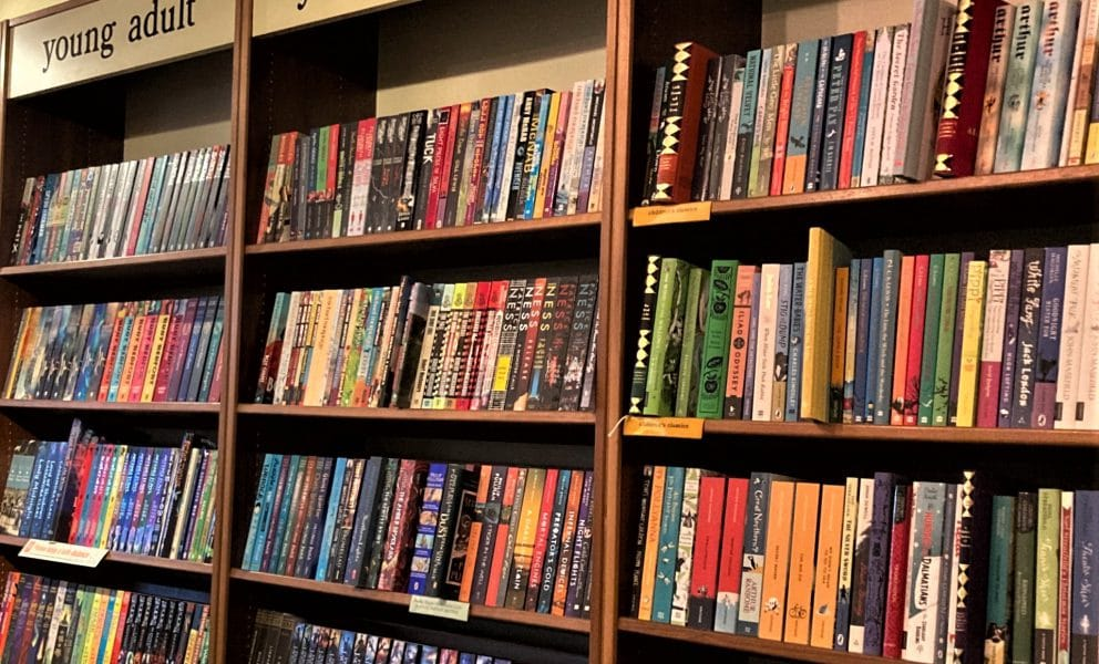 Childrens Young Adult Shelves