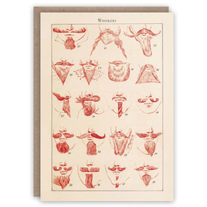 Cards Pattern Book Whiskers