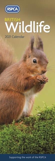 Calendar British Wildlife 9781529804294