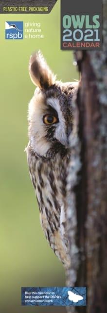 Calendar Owls 9781529807875