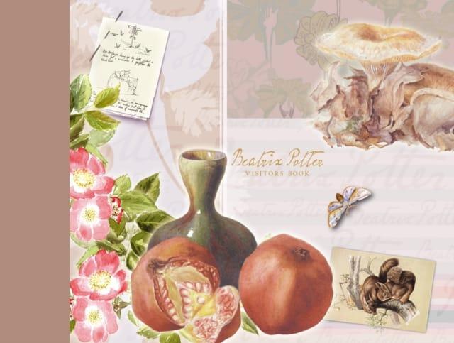 9780723257929 Beatrix Potter Visitors Book