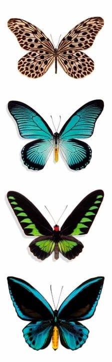 Butterflies Bookmark Pomegranate