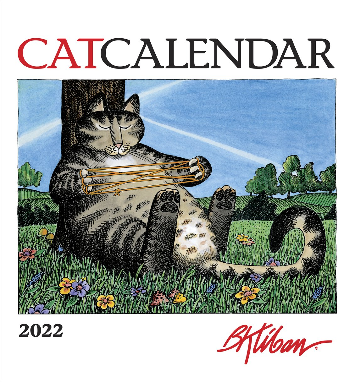 Kilban Cat 2022 Calendar