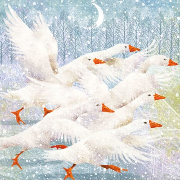 Christmas Card Pack Winter Geese