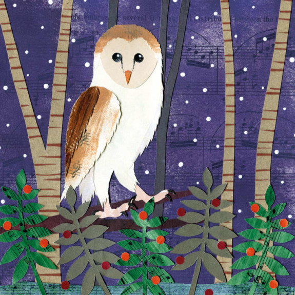 Christmas Card Pack Winter Owl